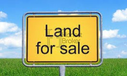 9 Acre Land Sell In Orchha On Road Attached