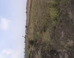 Property In Kotra Bhopal