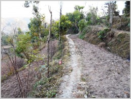 40 Biswa Land For Sale @28,00,000/-