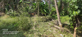 Land For Sale In Kannur.