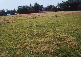 Land For Sale At Best Price