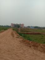 Plot For Gopal Balikuda Cuttack Twon Only 2 Km